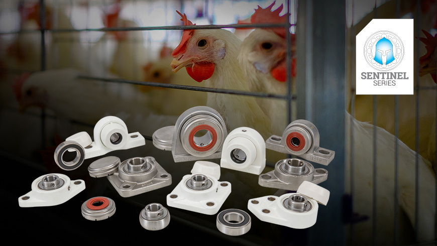 Sentinal series products superimposed over caged chickens