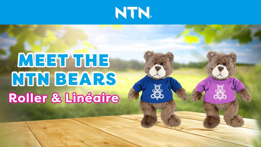 NTN Bear 2021
